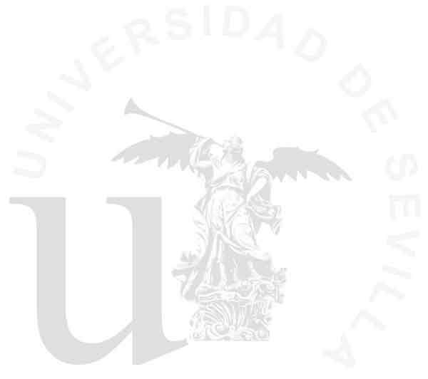 Study on the effect of Graviola extract on chronic pain, diabetes and cancer by the University of Seville